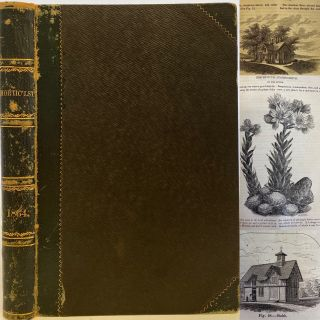 The Horticulturist and Journal of Rural Art and Rural Taste, Devoted to Horticulture, Landscape...