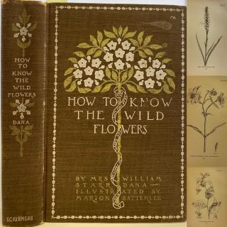 How to Know the Wild Flowers, A Guide to the Names, Haunts, And Habits of Our Common Wild...